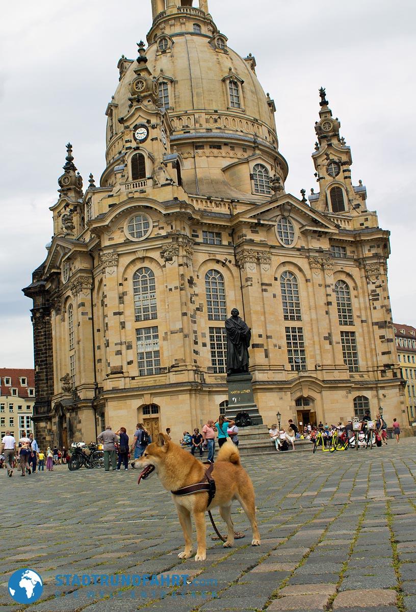 frauenkirche-hund