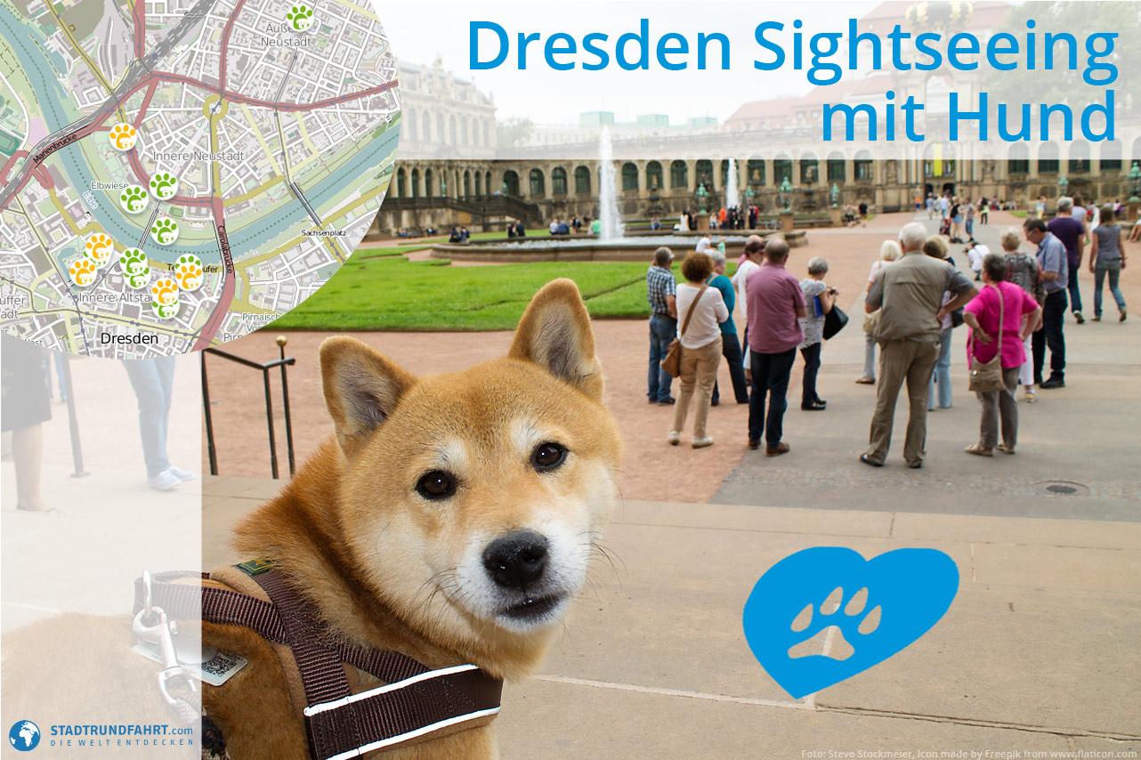 sehenswuerdigkeiten-dresden-mit-hund